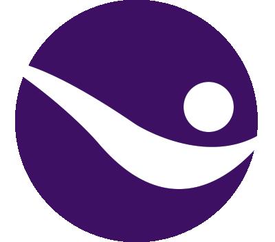 PN Icon